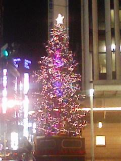 東急本店のクリスマスツリー